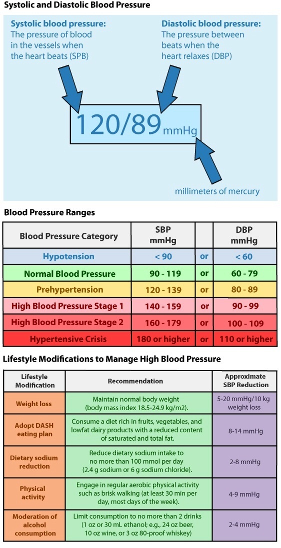 Food For High Bp Blood Pressure Chart Blood And Medical