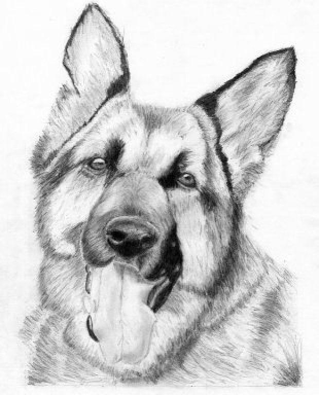 Ideas para hacer dibujos a lápiz | Aprender manualidades es ...