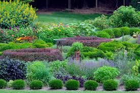 Professional landscaping design company's first take time and understand your area and how it can be perfectly designed.