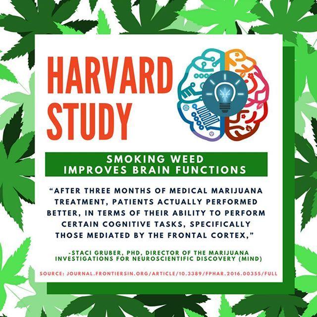 New Harvard Study #dope #hemp #endthedrugwar #science #strains #ganja #mmj #drugpolicy #legalizeit #love #cannabis #stonermeme #cannabiscommunity #contentmarketing #picoftheday #smoke #weedstagram #420 #legalize #maryjane #weed #blunt #infographic #info