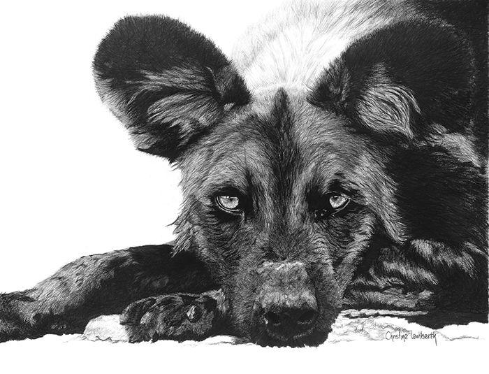 Christine Lamberth I AM A WILD DOG (Winner)