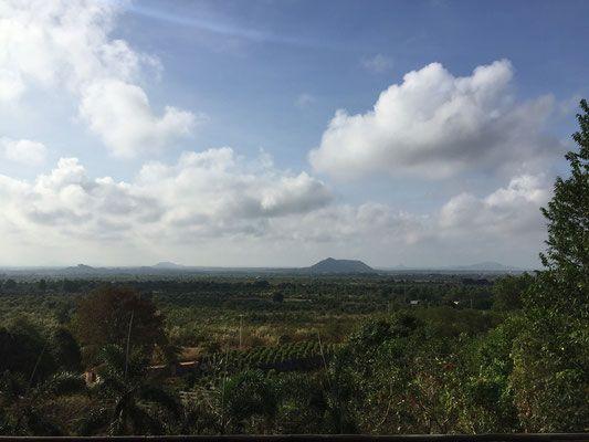 die Pfeffer-Farm - Mr. Bong's Finest Kampot Pepper