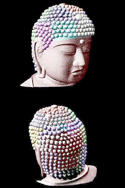 奈良・東大寺の大仏、「螺髪」の数は492個