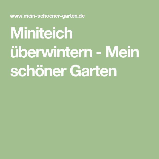 Perfect Miniteich berwintern Mein sch ner Garten