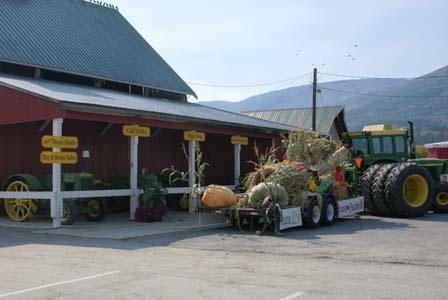 Demilles Market Salmon Arm BC - Walk The Corn Maze