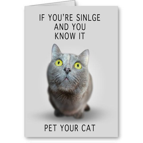 Funny Cat Card, Funny Singles Valentine's Day Card, S