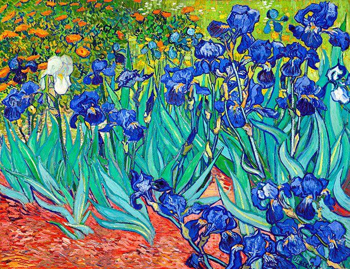 Masterpiece Art - Irises, $28.00 (http://www.masterpieceart.com.au/irises/)