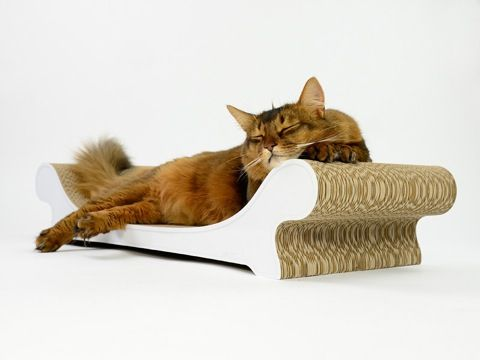 These elegant cat scratchers from Cat-on are just brilliant! My lot LOVE them and they really stand up to heavy use by six cats too.