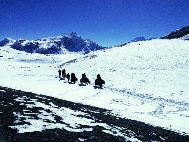 Thorong-La Pass, 5416m, Nepal.