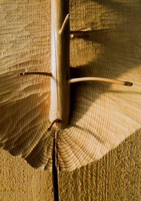 Giuseppe Penone: Art Estes, Artepovera Conceptualart, Conceptualart Contemporaryart, Contemporaryart Sculpture, Giuseppepenon Artepovera, Art Povera, Land Art, Art Contemporain, Woods Art