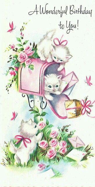Kittens & mailbox