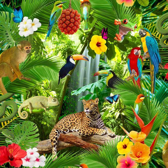 Bavlněná látka Tropický prales De luxe, digitální tisk