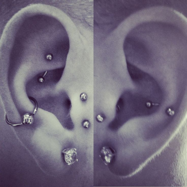 Collection! #piercings #snug #helix #tragus #rook #surfacetragus #conch #lobes