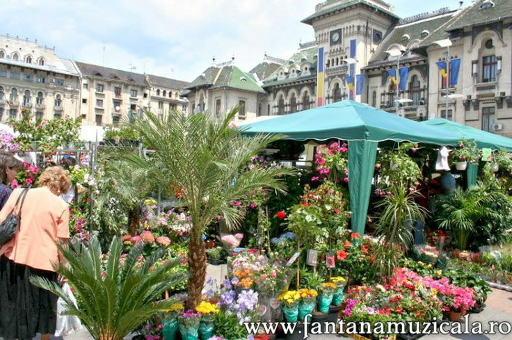 flowers festival Craiova 7 - From May 30 to June 2nd the entire Craiova City Center became the host for the Craiova Flowers Festival 2008. All the area near the musical fountain was inundated with flowers and decorative objects. Hosted by www.iCraiova.com