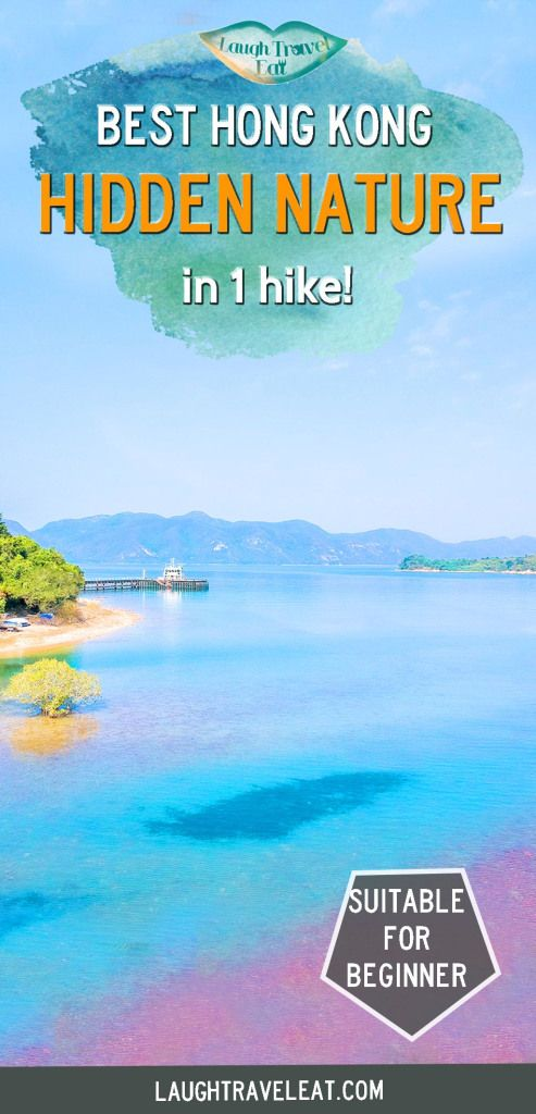 A Sai Kung hike from Pak Sha O to Lai Chi Chong, a geopark, Sham Chung with its grass field, and Yung Shue O mangrove forest - in Hong Kong!