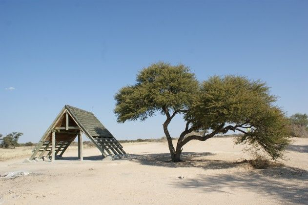 Kgalagadi Park. A 2 week camping trip - no fences!
