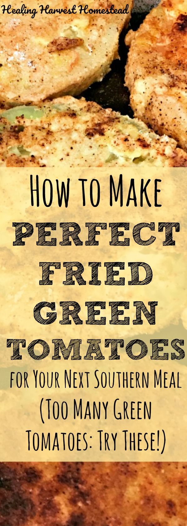 Have you ever thought something sounded horrible...until you tried it? Well, that was my experience with making fried green tomatoes! Here is my recipe and directions for how to make the BEST fried green tomatoes ever! If you have too many green tomatoes, you MUST try making fried green tomatoes for your next Southern meal!
