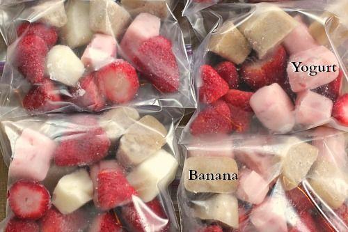 DIY Fruit and Yogurt Smoothies Bags   One Hundred Dollars a Month