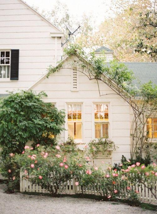 white house, flowering shrubs