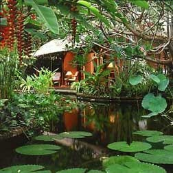 Watergarden Hotel, Candidasa, Bali, Gardens.... ummmmmm! Like duh this is where I'd rather be!