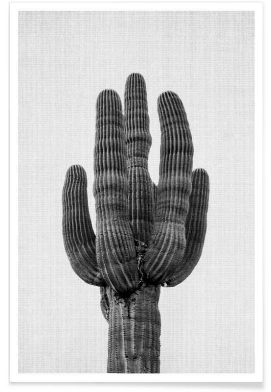 Print 91 - Lila x Lola. Black and white cactus photograph. The perfect print to bring a little boho into your bedroom.