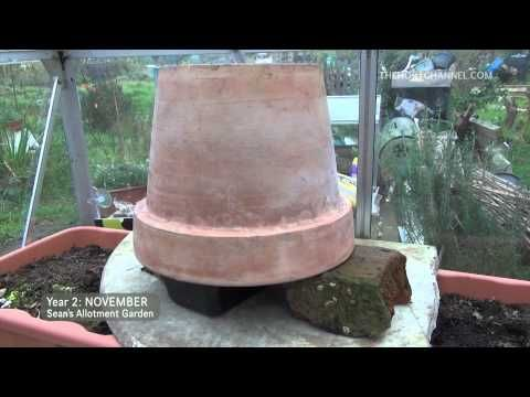 ▶ Easy way to heat the greenhouse / shed for cheap | Sean's Allotment Garden - YouTube