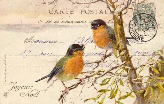 cartes postales cartes postales vintage and oiseaux on pinterest. Black Bedroom Furniture Sets. Home Design Ideas
