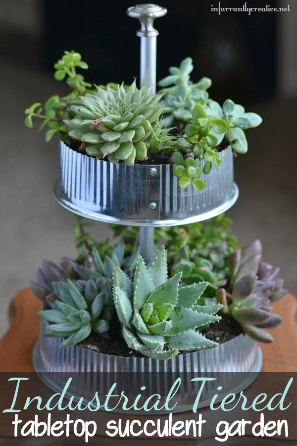 Industrial Tiered Tabletop Succulent Garden made from vent caps found at #lowes