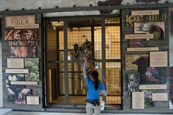 1000 Images About Outdoor Donor Recognition Zoos On