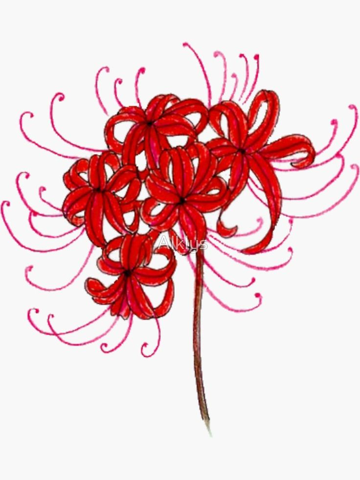spider lily flower tokyo ghoul