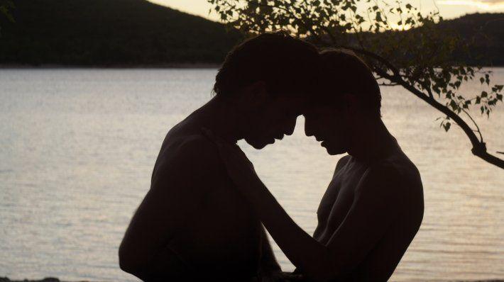 "Stranger by the Lake (""L'inconnu du Lac"") 2013 (dir. Alain Guiraudie, France)"
