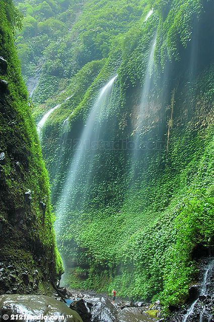 Madakaripura Waterfall, East Java, Indonesia.