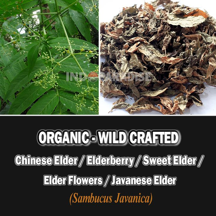 Analgesics, blood purifiers, bowel and bladder stimulants, or even for poison. It is also believed to be an aid against numbness, rheumatism, spasms, swelling, and trauma, as well as for general bone and circulatory health, etc  #DriedHerbs #HerbalRemedies #HerbalMedicine