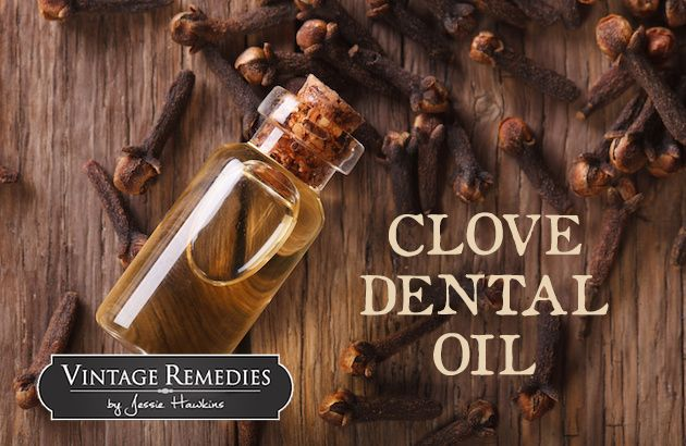 Clove oil has been used in dentistry for centuries, providing both pain relief and powerful antimicrobial benefits. Thanks to modern scientific research, it is now clear that its optimal use is short term, either extremely diluted for teething little ones or in a mild dilution while waiting for a de ...