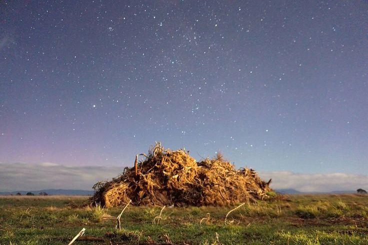 Star shot at Evandale Tasmania