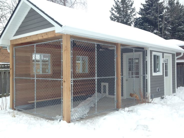 Dog Kennels In The Calgary Area