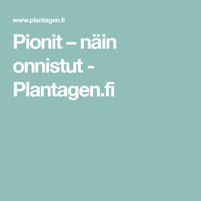 Pionit – näin onnistut - Plantagen.fi