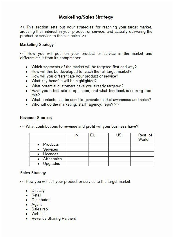 Strategic Sales Plan Template In 2020 Sales Strategy Template
