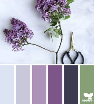 liked on pinterest design seeds latest articles bloglovin - Kopfteil Plant Knig
