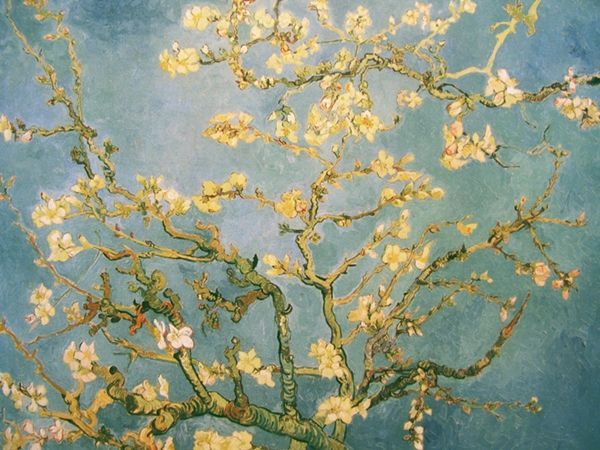 vincent van gogh vincent van gogh amandelbloesem almond blossom mandelbluete 1890 de. Black Bedroom Furniture Sets. Home Design Ideas
