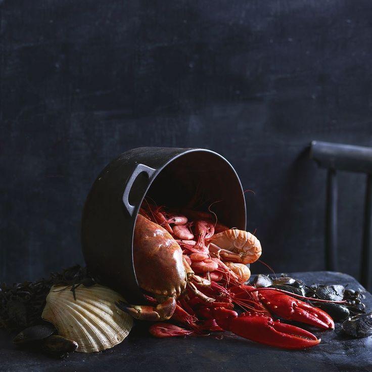 Shellfish Photo: Elisabeth Jahr Hilde