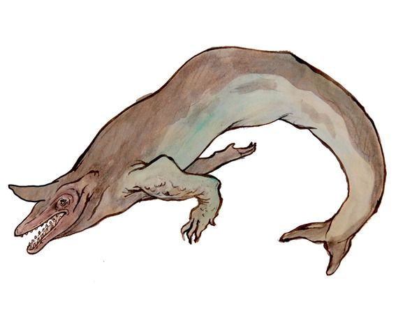 Alkali monster- North American cryptid: a reptilian creature with one huge horn in between its eyes and nostrils. It was sighted by two brothers in land Alkali, Nebraska. It was described as being 40ft long, and looking like an alligator. It had a guttural roar.