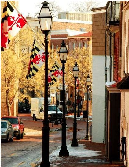 There is nothing cooler than Main Street lined with our gorgeous state flag!!!