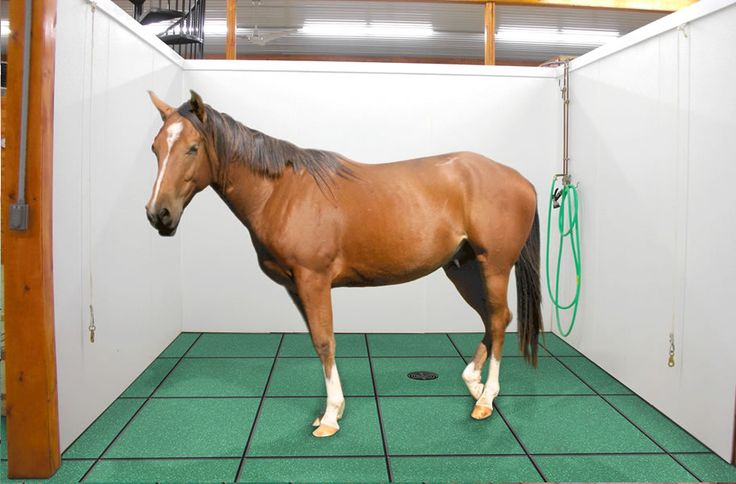 1000 Images About Horse Stall Amp Animal Flooring On