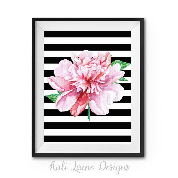 Pink Watercolor Peony Black White Stripes  by KaliLaineDesigns