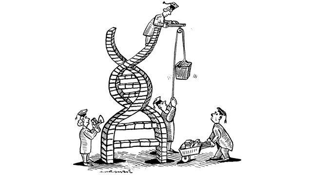 140 best DNA, genetics, epigenetics images on Pinterest
