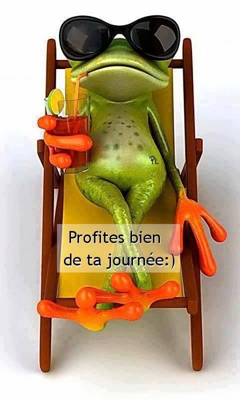 Profites bien de ta journée :) #bonnejournee grenouille chaise longue cocktail detente humour