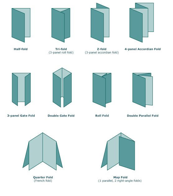 17 best images about foldables as graphic organizers on pinterest