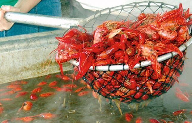 Breaux Bridge Crawfish Festival in southwest Louisiana