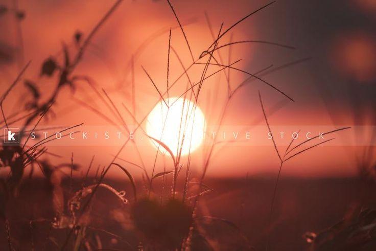 Inspiring ecotourism with the Brazilian sunset in Curitiba. By Kiyoshi Takahase Segundo.  Stockiste.com Creative stock + Exclusivity on the GO!   Download Link: https://www.stockiste.com/display/sunset/9558  #Stockiste, #StockisteCreativeStock, #Stockphoto, #Stockimage, #Photography, #Photographer, #KiyoshiTakahaseSegundo, #ContentMarketing, #Marketing, #Storytelling, #Creative, #Communications, #Brazilian, #Sunset, #Curitiba, #Ecotourism,  Sunset © Kiyoshi Takahase Segundo